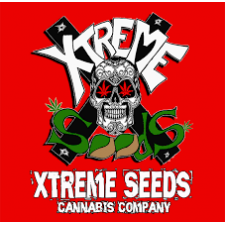 South Mountain Cheese - Extrem Seeds
